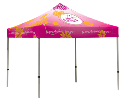 10' x 10' Canopy with Frame